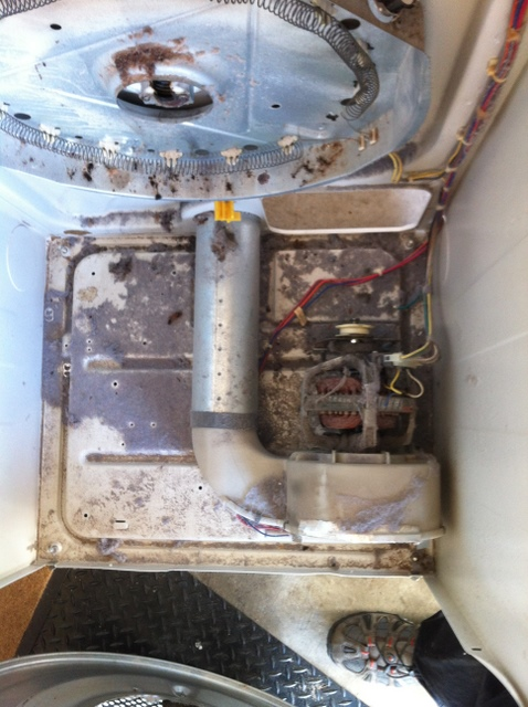 dryer cleaning to remove lint build up