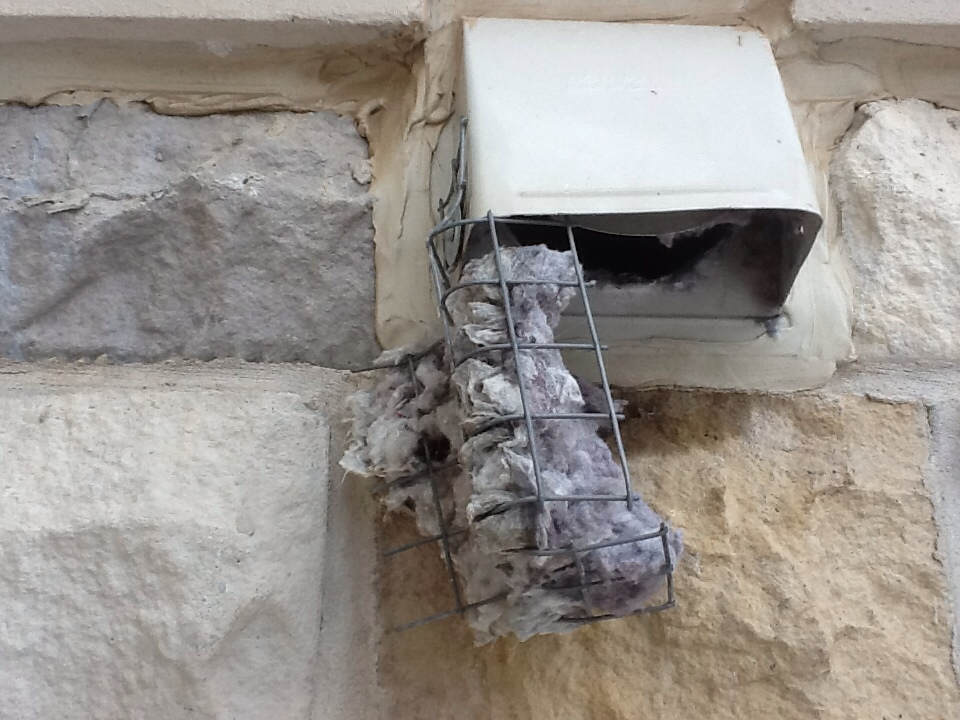 Clogged dryer vent
