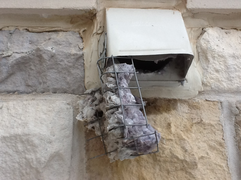 Why Screens Should Not Be Used On Dryer Vent End Caps
