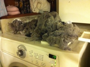 Lint build up can lead to a burning smell from inside dryer